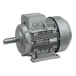 MOTOR Siemens 1Le0 T 100 HP 4 P