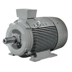 MOTOR Siemens 1Le0 T 60 HP 2 P