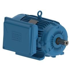 Motor WEG M 0,75 HP 2P ALTO TORQUE