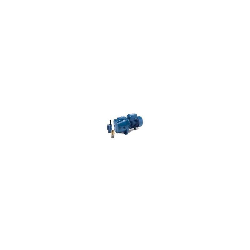 Bomba Centrífuga 2CPm25/130N